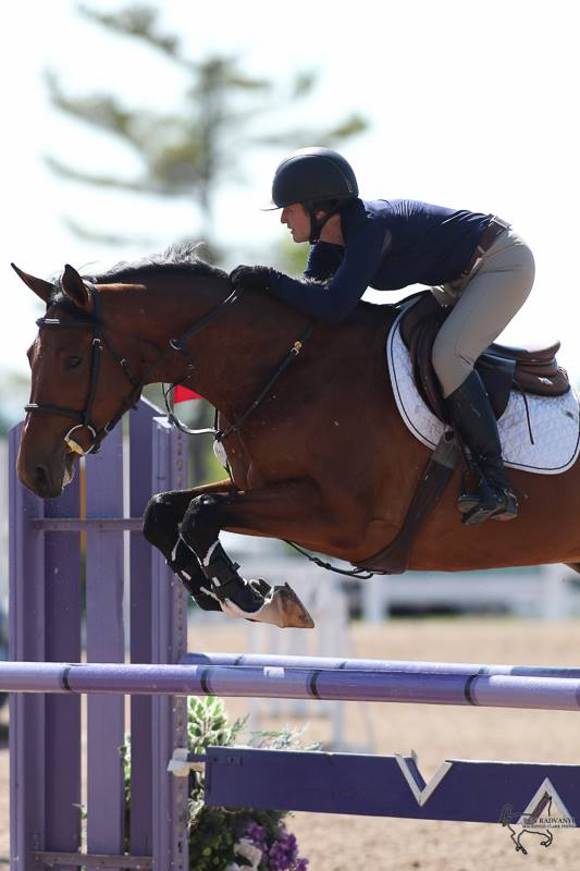 Papaya, by Portland L. Winner of the 7 year old young horse class with rider/owner Hannah Maley.