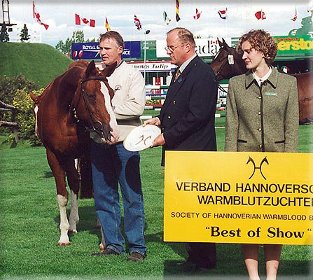 Windhuk awarded Best of Show at the Hanoverian Mare Show