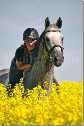 Quidam Blue in Field with Beke Brinkmann