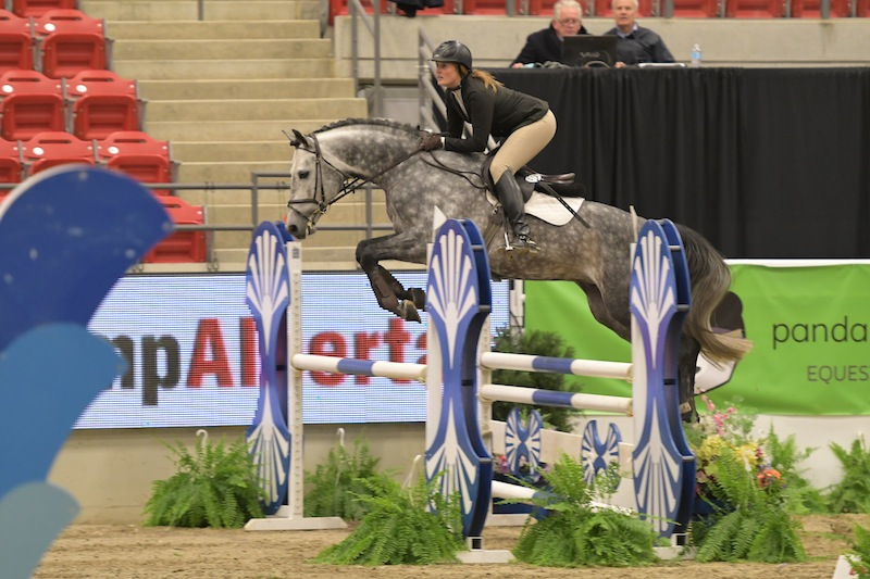 Casparo Jumping in 5 Year Old Young Horse Final with Rider Beke Brinkmann