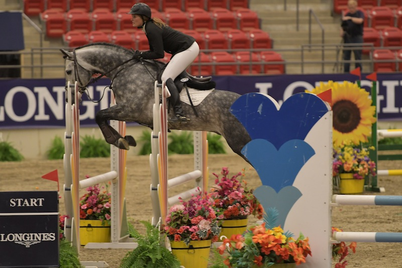Casparo at the Royal West Tournament with rider Beke Brinkmann (Two)
