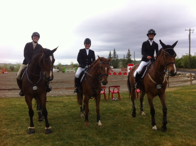 Three horses sired by Portland L in the 1.20m Jumper at Spruce Meadows May Classic.
