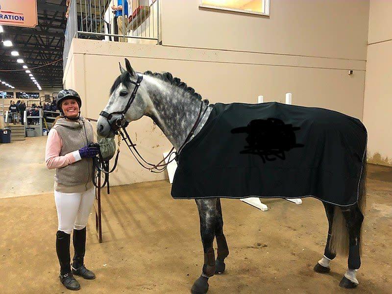 Casparo at Hanoverian Stallion Licensing, In-Hand Phase